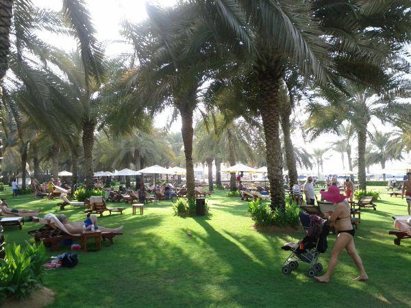 sheraton-jumeirah-beach-resort-towers-garden