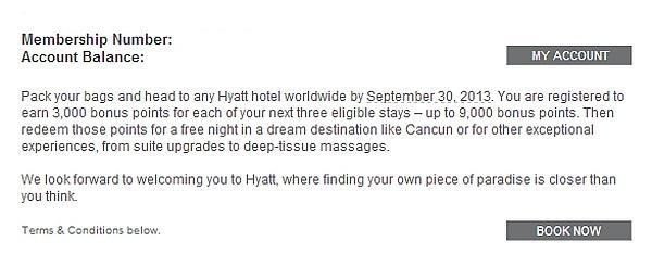 hyatt-summer-2013-promo-text