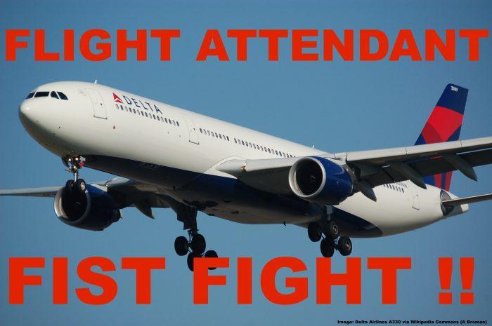 Delta_A330 Fight