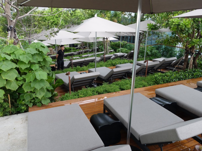 Park Hyatt Bangkok - Pool Area - Sun Chairs Elevated